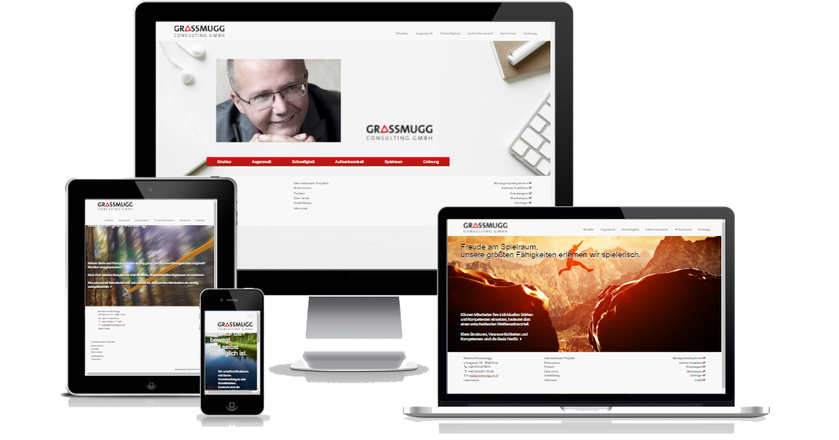 Grassmugg Consulting Gmbh - Responsive (10/16):  (© www.grassmugg.co.at / e-dvertising)